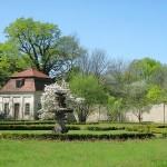 Rasengarten in Tiefenau