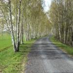 Kanalweg von Streumen nach Marksiedlitz