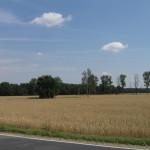 Landschaft um die Heidehäuser