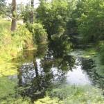 Elsterwerdaer Floßkanal